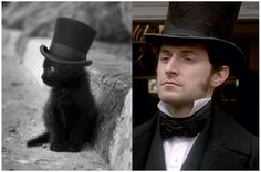 Okay, I'm sorry, but that is just too cute. That kitten bears an uncanny resemblance to Mr. Thornton in his top hat!!