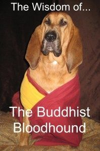 Bloodhounds and Buddhism? novels-2-love