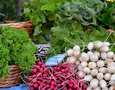 Radish, Vegetables, For Sale