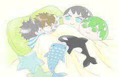 Sleeping ...  From 4_ne_ 8 ... Free! - Iwatobi Swim Club,  free!, iwatobi, makoto tachibana, makoto, tachibana, sousuke, sousuke yamazaki, yamazaki, dog, puppy, squishy bean, mookoto outfit