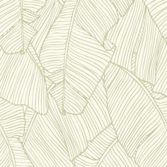 Leaf Outline Abstract 33 x Wallpaper Roll Тропические листья Back Wallpaper, Palm Leaf Wallpaper, Botanical Wallpaper, Wallpaper Direct, Geometric Wallpaper, Tropical Wallpaper, Vinyl Wallpaper, Gray Wallpaper, Wallpaper Patterns