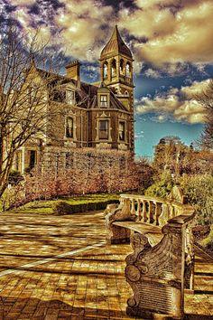 Creative Photos, Dream Vacations, Barcelona Cathedral, Ireland, Irish, Places To Go, 18th, Wedding Inspiration, Bird