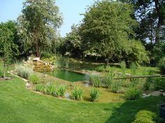 pools with natural landscape | Natural Swimming Ponds  Pools Portfolio