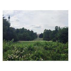 Parco Sempione  Milano  #milanonotes#milanotes#milano#milan#facade#ipalazzidimilano#madeinmilan#ilovemilano#milanodavedere#milanodaclick#walkungaround#archilovers#architecture#urban#urbanjungle#expo#igersoftheday#igersmilano#ig_milan#streetphotography#vivomilano#volgomilano#architecture#contrast#lookingup#nature#green#flora#spring by milanonotes