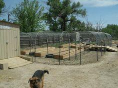 Skye K23's Chicken Coop - BackYard Chickens Community