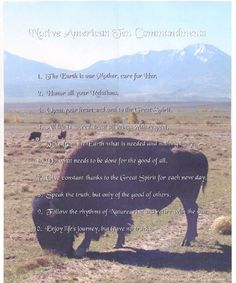 """The first type of """"religion"""" that im actullay wanting to learn more about Native Amican Ten Commandments Native American Prayers, Native American Wisdom, American Spirit, Native American History, Native American Indians, Native Americans, Don Juan, What Is Need, Home Quotes And Sayings"""