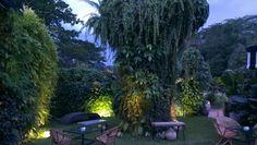Green garden- Kakis bistro and bar Singapore, Changi