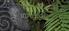 art Maori - Nouvelle Zélande - 69547769