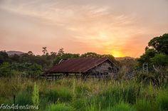 Nature is winning #relic #ruins #ruralnsw #oldbuildings #fotoadventures