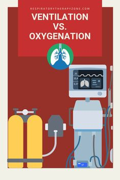 Ventilation vs Oxygenation vs Respiration - What is the Difference? This guide breaks down the definitions, similarities, and differences of each.#Ventilation #Oxygenation #Respiration #RespiratoryTherapy Respiratory Alkalosis, Respiratory Therapy, Respiratory System, Arterial Blood Gas, Intracranial Pressure, Diabetic Ketoacidosis, Mechanical Ventilation, Brain Injury, Learning Process