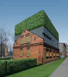 ♂ Green roof top D House in Zabrze, Zabrze #greenroofs