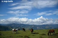Laderas del monte Soratxipi