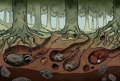 Living Things and Their Habitats - Underground Forest Habitat - Mercury Mine Grade Happenings Fox Habitat, Forest Habitat, Ocean Diorama, Animal Art Projects, Science Activities For Kids, Animal Habitats, Elementary Art, Teaching Art, Book Illustration