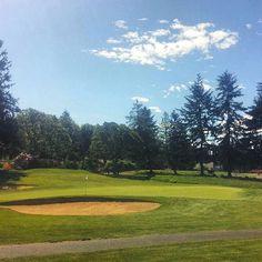Sunny days at Oakbrook Golf Club, Lakewood, WA.