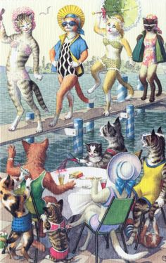 Mainzer_Alfred/ cool cat. beauty contest bathing beauty cats in clothes postcards dressed cats