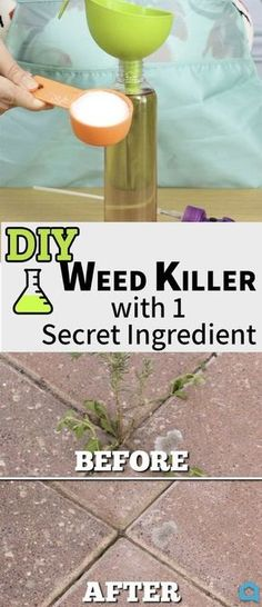 Keep your lawn and patio looking great this summer with this frugal, non-toxic recipe for your own DIY weed killer! This brilliant tip and lifestyle hack is inexpensive, quick, and super easy! A great way to keep the areas around your home outdoors looking great! Diy Hacks, Cleaning Hacks, Diy Hanging Shelves, Floating Shelves Diy, Floating Candles, Diy Garden, Garden Oasis, Garden Planters, Cool Ideas
