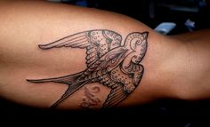 Scott Campbell bird Tattoo