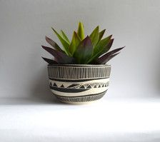 This bowl planter is wheel thrown and hand carved. This listing is made to order. Will arrive within 2-4 weeks. The bowl is glazed with a clear food safe glaze and does not contain a drainage hole- therefore it can be also used as a nice serving bowl! Measures about 6 inches wide by 4.75 inches tall.
