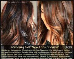 Ecaille. Dark Brown with Caramel