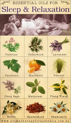 Aromatherapy For Australia: 12 Essential Oils For Sleep & Relaxation