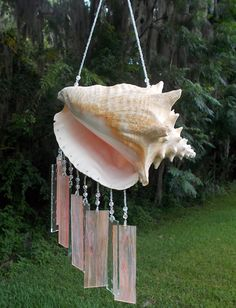 Natural Conch Shell Upcycled into a Windchime with by hunter5220, $80.00