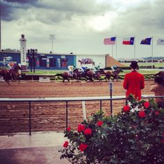 Great opening weekend at Lone Star Park. #HorseRacing