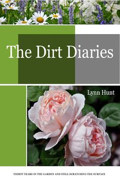 The Dirt Diaries: Lewis Ginter is profiled in the butterfly chapter & mentioned in the  Kordes Fairy Tale roses chapter too! via @Lynn Hunt