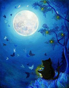 Kitty and fireflies