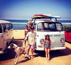 Dogs, boards, #beach and #Volkswagen - the perfect #RoadTrip! #VW #Travel #Adventure #Explore #Fun