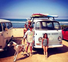 Dogs, boards, #beach and #Volkswagen - the perfect #RoadTrip! #VW #Travel #Adventure #Explore #Fun
