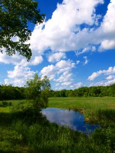 Moraine Hills State Park, an Illinois State Park located nearby Algonquin, Antioch and Arlington Heights