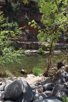 Cool off in one of Arizona's swimming holes, like Grasshopper Point in Oak Creek Canyon. Places To Travel, Places To See, Oak Creek Canyon, Bullhead City, Park Resorts, Natural Bridge, Arizona Travel, Swimming Holes, Summer Bucket Lists