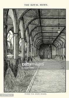 Vintage engraving of the Royal Mews, Stable of State Horses, 19th Century. A Royal Mews is a mews (i.e. combined stables, carriage house and in recent times also the garage) of the British Royal Family.