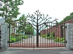 Bronzed Beech Tree Gate