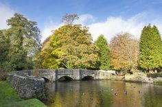 A bridge that has been photographed a great many times but a first for me. It was nice to have some autumnal colour in the trees. Peak District, Derbyshire, In The Tree, Autumnal, Paths, Bridge, Places To Visit, Trees, Colour