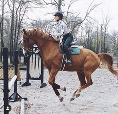Cute Horses, Pretty Horses, Horse Love, Beautiful Horses, Equestrian Outfits, Equestrian Style, Equestrian Problems, Horse Photos, Horse Pictures