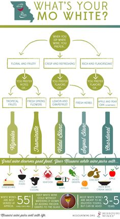 Want to learn more about wine (particularly, Missouri wine) in a fun way? Check out our Infographics gallery on missouriwine.org!
