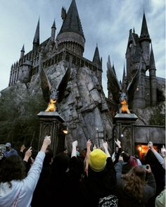 Fans at the Wizarding World of Harry Potter performed a eulogy for Rickman and Snape, and honoured him by raising their wands in the air.