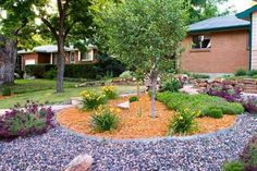 Landscaping And Outdoor Building , Xeriscape Water Saving Landscaping…
