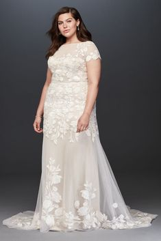 Floral Illusion Cap Sleeve Plus Size Wedding Dress Style Ivory, size wedding dresses illusion Plus Size Wedding Dresses With Sleeves, Plus Size Wedding Gowns, Formal Dresses For Women, Shift Wedding Dress, Wedding Dress Styles, Designer Wedding Dresses, Pink Bridesmaid Dresses Uk, Bridal Dresses, David Bridal Wedding Dresses