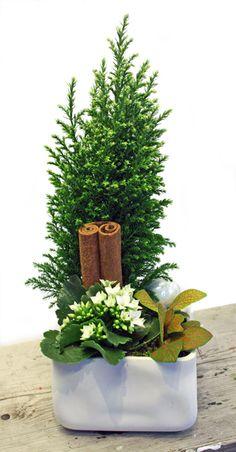 holmsunds blommor: Julgrupper - tre olika