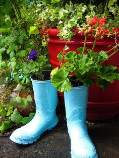 Old boots, either painted or not, make great little planters.  My kids toy dump trucks have succulents planted in them.