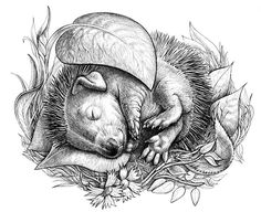Little hedgehog and other little animals. Drawing, free hand.