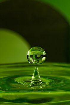 macro water - green