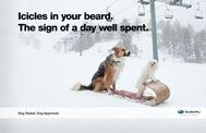 Funny dogs! Love the new ads for subaru
