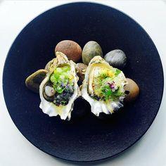 M I M I P L A N G E  Amuse of O Y S T E R S  #Oysters with caribbean #pickle cucumber and avocado scotch bonnet salsa & bajan pickle #caviar. Repost @gastroart via @chefjasonhoward by mimiplange