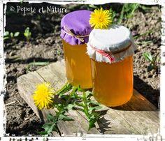 © Popote et Nature - Cramaillotte ou miel de pissenlit