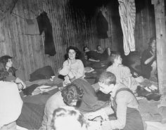 Anne Frank In Concentration Camp - suffering from Typhus in the Bergen-Belsen concentration camp ...