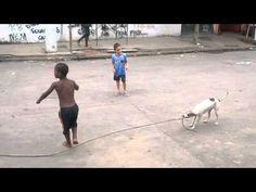 Enquanto isso ...Na comunidade Kelson...As crianças se divertem e o cachorro também - YouTube