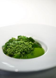 White chocolate with concentrated beech leaf lettuce and beech leaves   restaurant Geranium